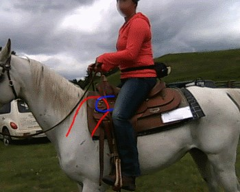 2015 June 30 4 saddle position on shoulders.jpg