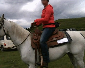 2015 June 30 3 saddle position on shoulders.jpg