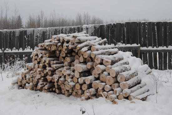 2012_Nov_24_9_birch_firewood.jpg