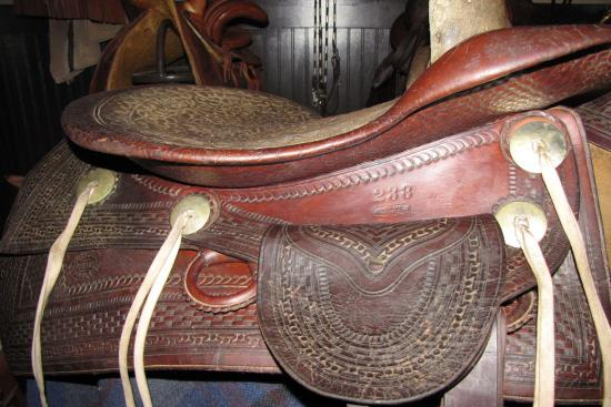 2013_Feb_27_14_c._1870_SC_Gallup_Western_Sidesaddle_0004.jpg