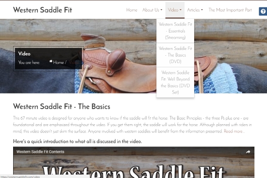 2017 March 28 5 Western Saddle Fit video main page.jpg