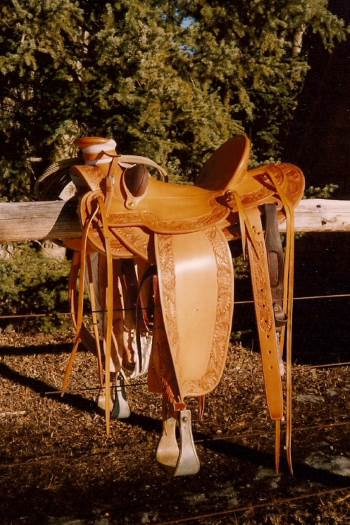 2014 August 15 3 second saddle new.jpg