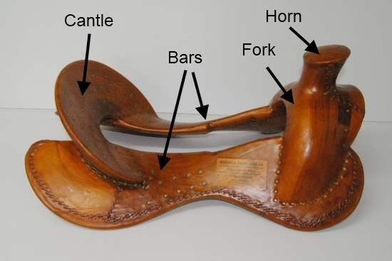Saddle fit - Western compared to English Part 1