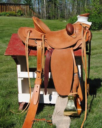 2015 Dec 18 5 Rod's second saddle.jpg