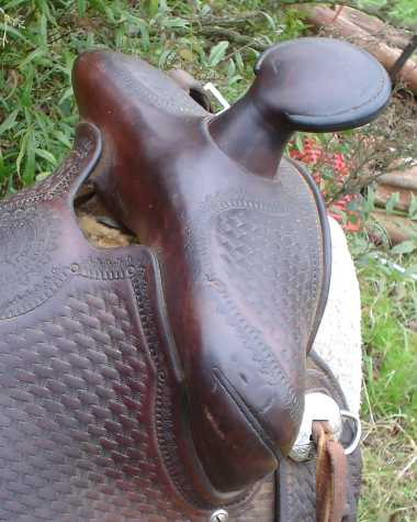 copy_Lictenberger-Ferguson_saddle.jpg