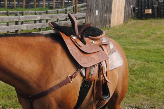 2014 July 10 7 bad side saddle.jpg
