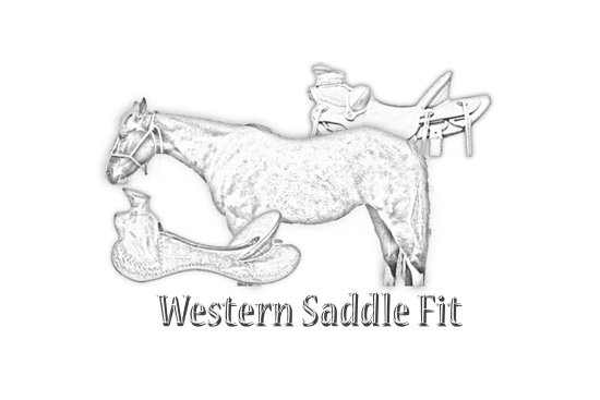 2017 Jan 28 10 western saddle fit watermark.png