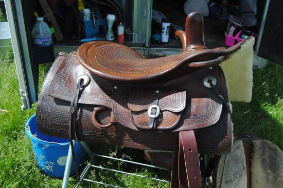 2014 July 10 13 Musgrave saddle rides well.jpg