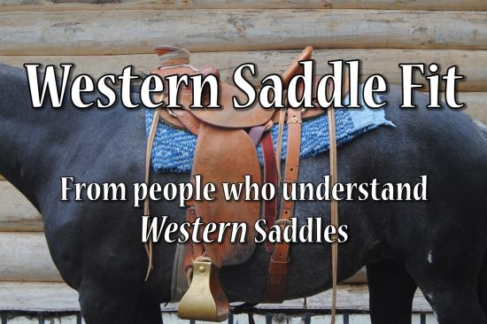 2017 Jan 28 9 western saddle fit tag line.jpg
